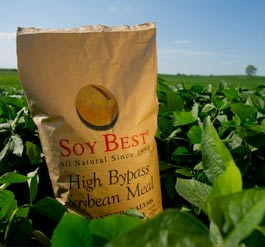 Soybest com :: All Natural High Bypass Soybean Meal
